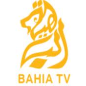 bahia tv dz net worth