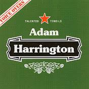 Adam Harrington Voice Actor net worth
