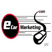 eCar Marketing LLC net worth