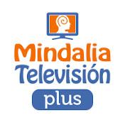 Mindalia Televisión Plus net worth