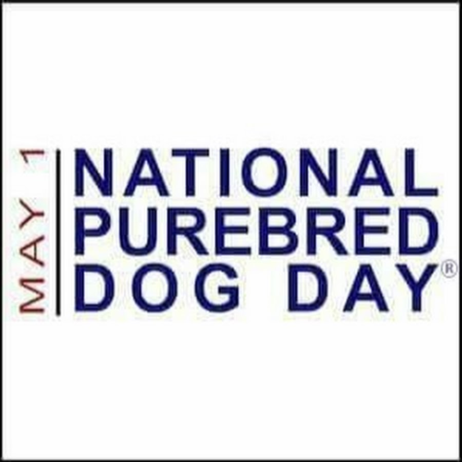 National Purebred Dog Day