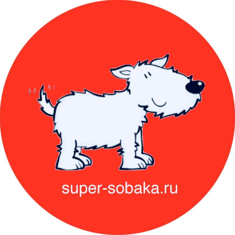 Super-sobaka