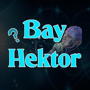 Bay Hektor