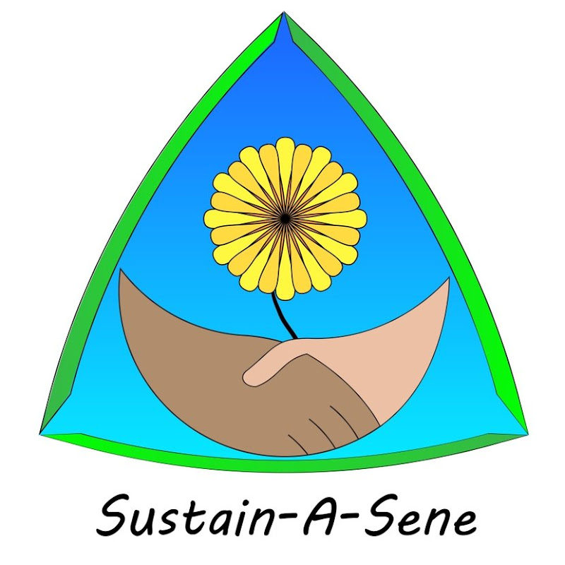 Sustain-A-Sene with Constellation