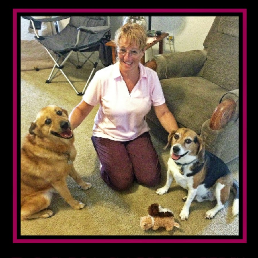DogVacay Winter Haven