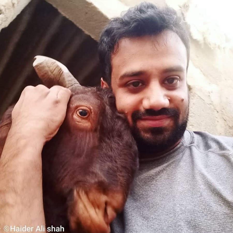 Animal Lovers Pakistan