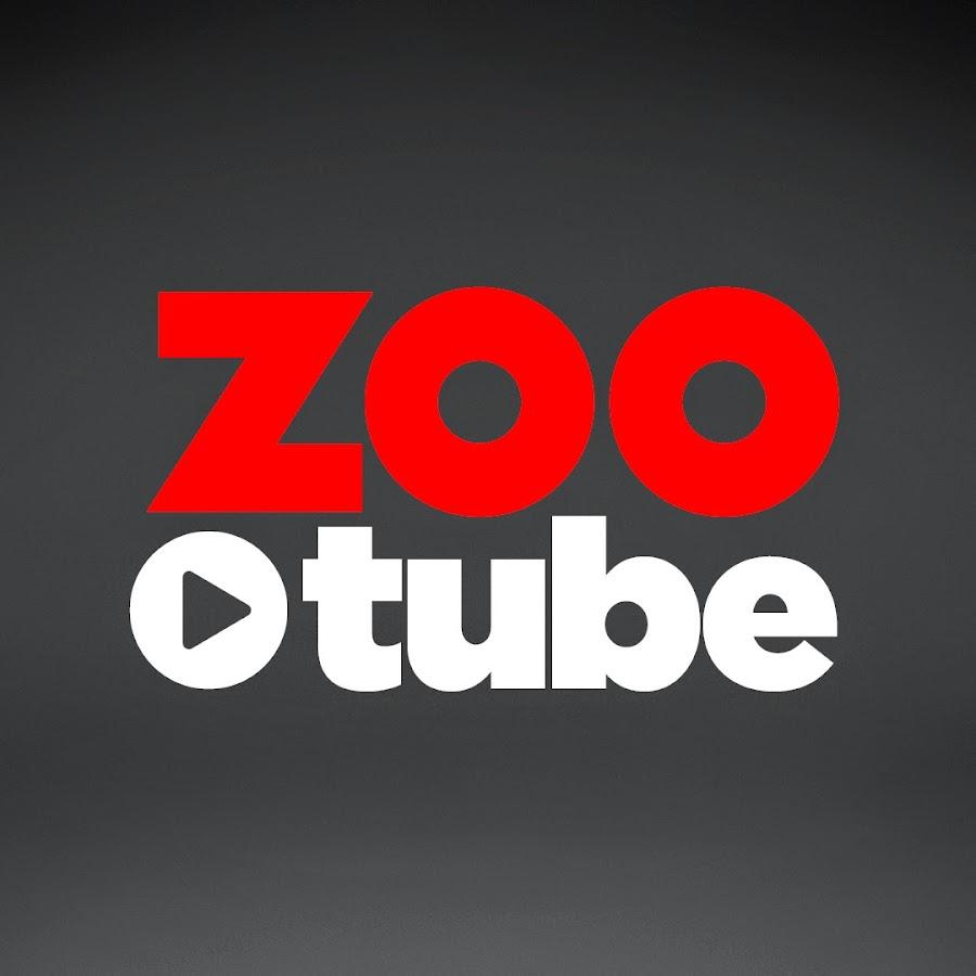 Zoo Tube Youtube Youtube'da i̇zlenmeyen videoları karşınıza çıkaran site: zoo tube youtube