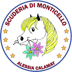 Scuderia di Monticello asd - cavalli e pony