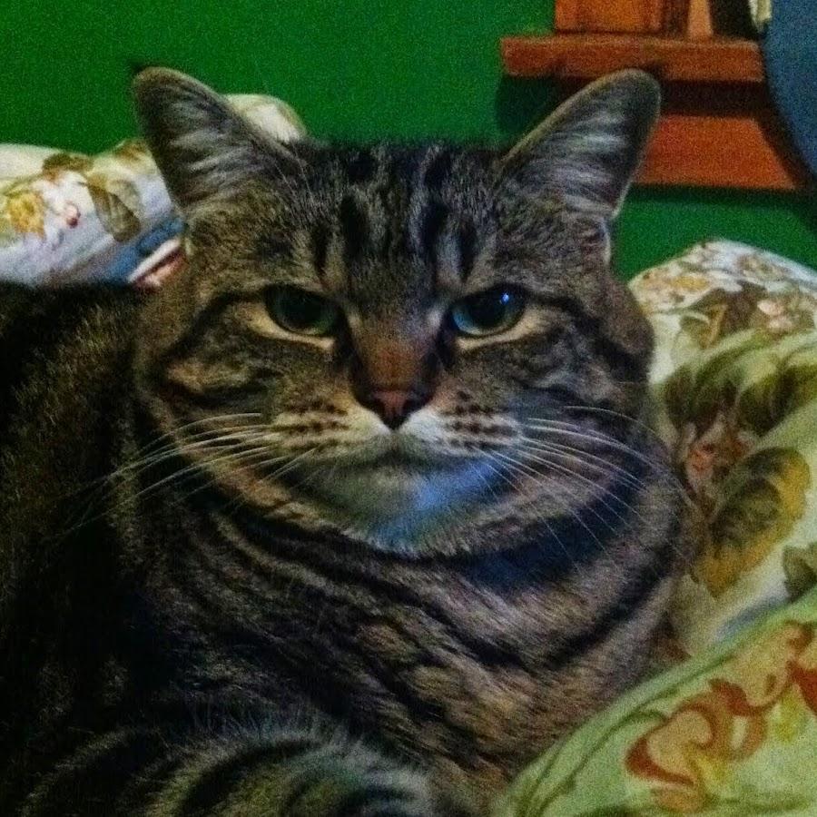 Thefat Cat