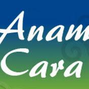 COMUNIDAD Anam Cara net worth