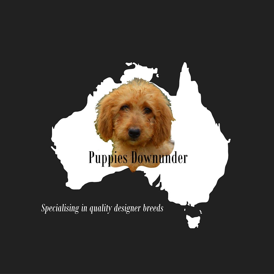 Puppies Downunder