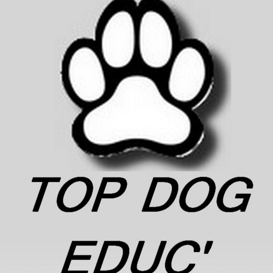 Top Dog Educ'