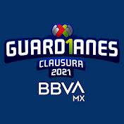 LIGA BBVA MX net worth
