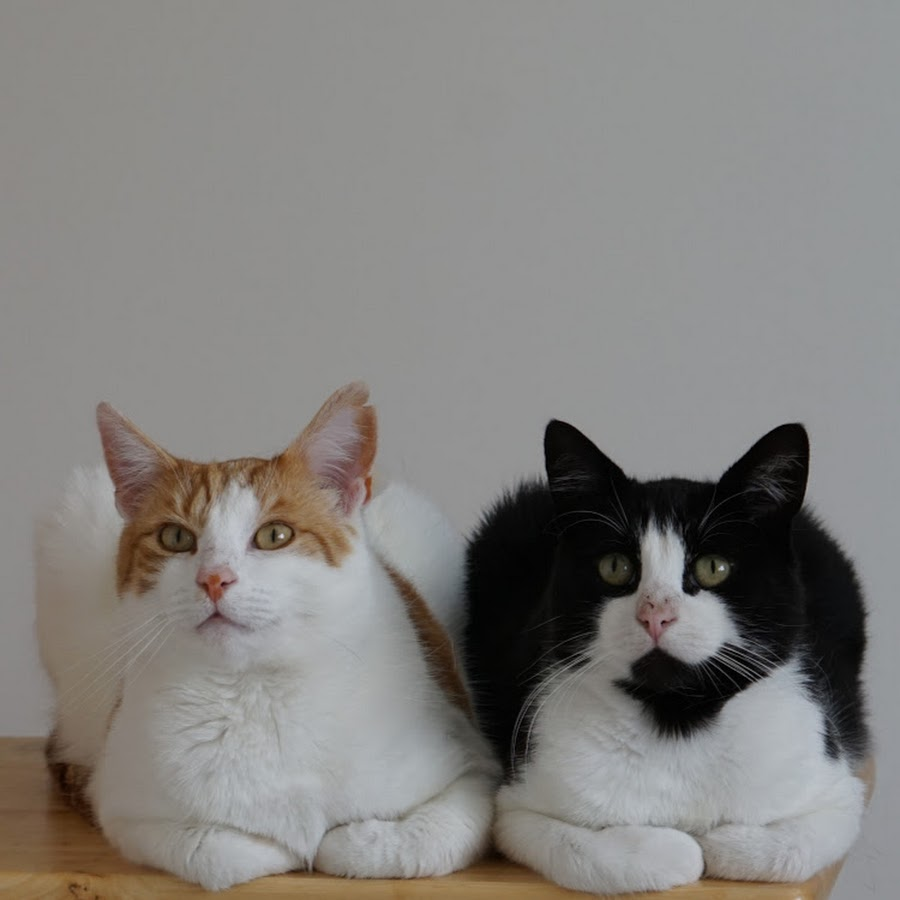 Tom & Mimi