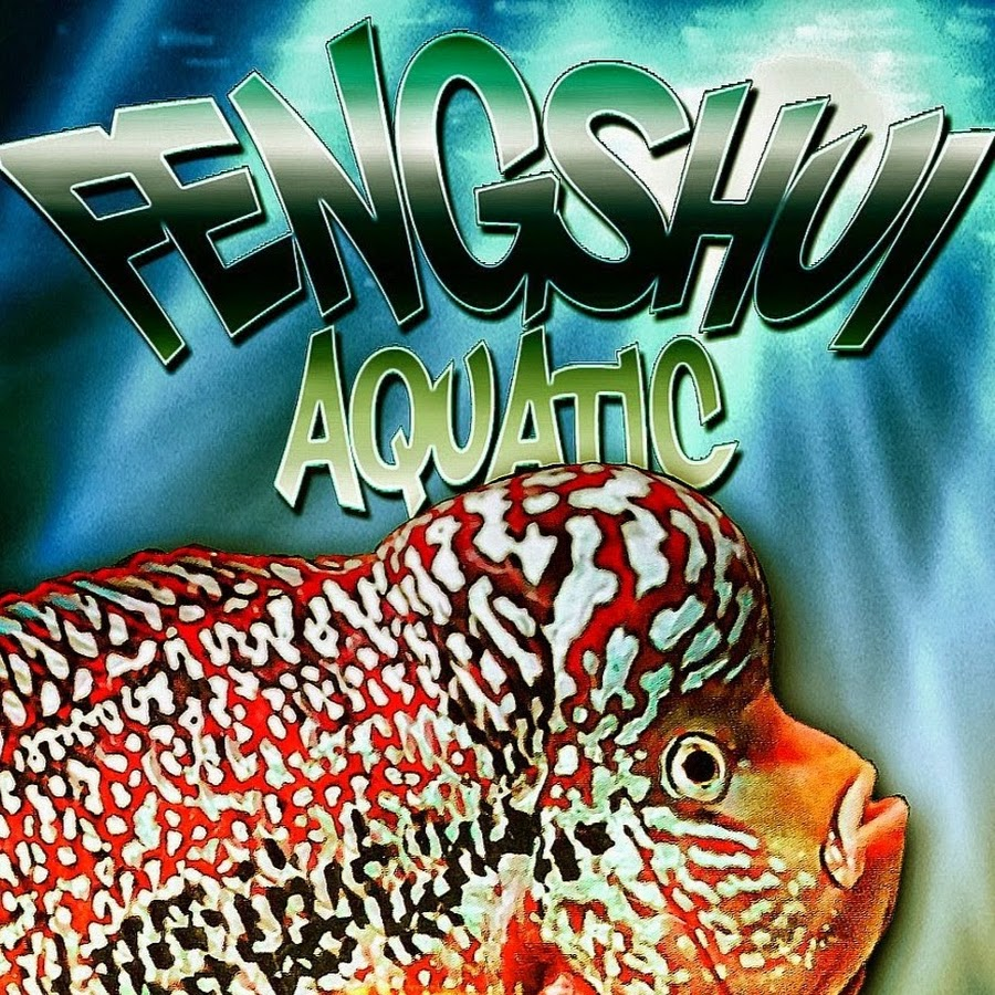 Fengshui Aquatic