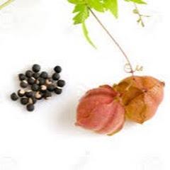 Aadhiyagai foodfirst