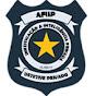 AFIIP Investigação & Inteligência Privada
