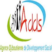 Agence Djiboutienne de Développement Social net worth