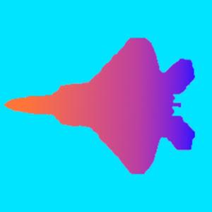 raptor aviation