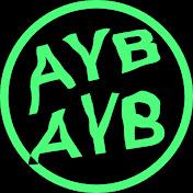 AlirezaYaBoy net worth