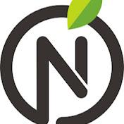 Natura Fitt net worth