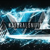 NaturaLSnipin net worth