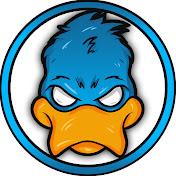 Duck360Gaming2 net worth
