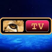 PROJECT CAMELOT TV NETWORK LLC net worth