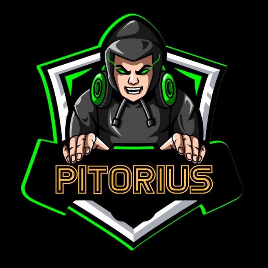 Pitorius GameVlog