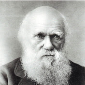 Charles Darwin net worth