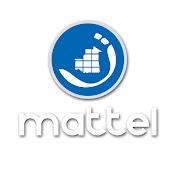 Mattel MR net worth