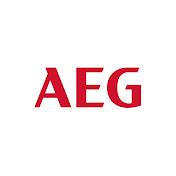 AEG net worth