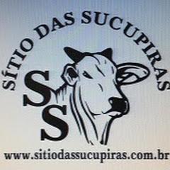 SITIO DAS SUCUPIRAS