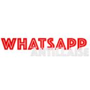 Whatsapp Antillaise net worth