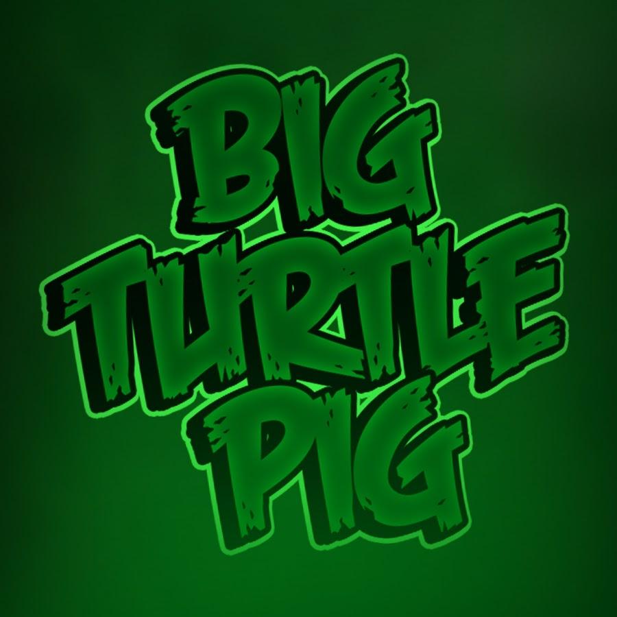BigTurtlePig