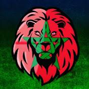 Hicham Gandouli net worth