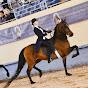 Saddleseatsophie - Youtube