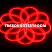 The Sound Test Room net worth