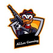 ALLex Gaming net worth