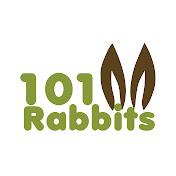 101Rabbits net worth