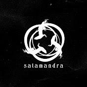 SalamandraPY net worth