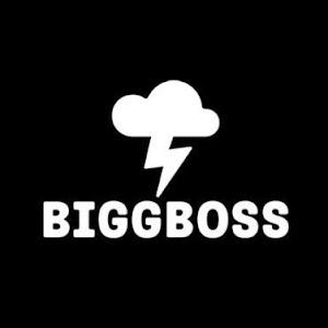 Biggbosstube YouTube channel image