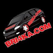 Bri4ka. COM net worth