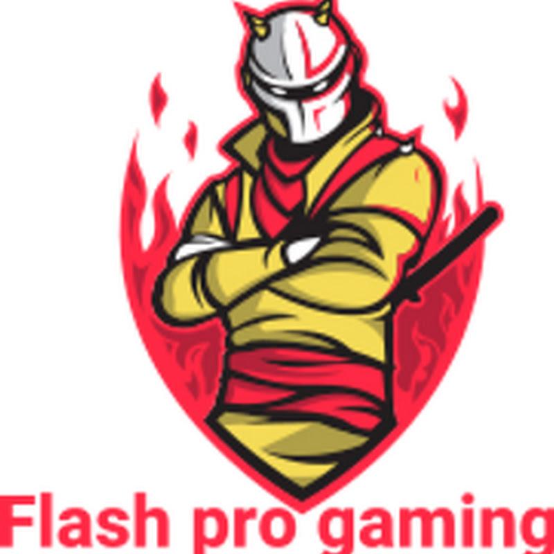flash pro gaming (flash-pro-gaming)
