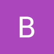 Chinguitel S.A net worth