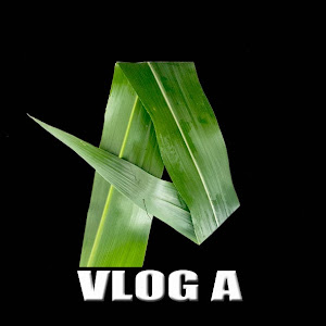 UCJ29XVgrhyKExYaBPBfngHw YouTube channel image