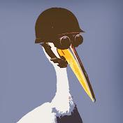 Modest Pelican Avatar