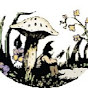 Toadstool Bookshops - Youtube