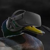 Duck Named Carl net worth