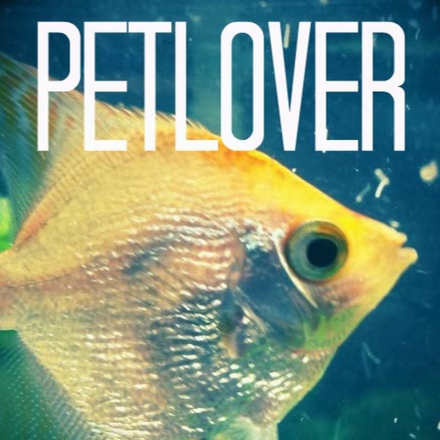 petlover997